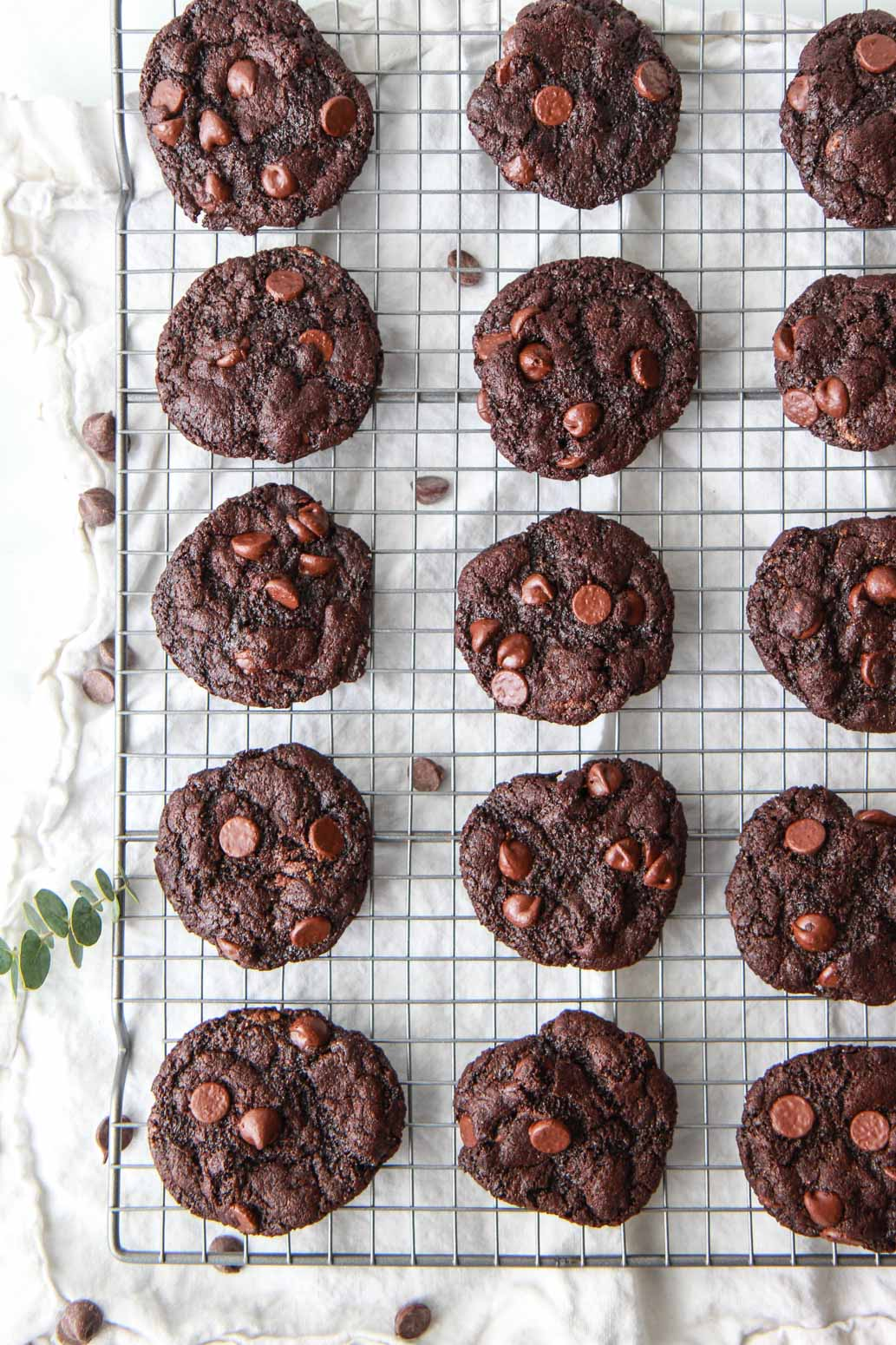 The best gluten-free, oil-free, and vegan double chocolate chip cookies that can be enjoyed in just 15 minutes and require just 7 ingredients! A one bowl vegan dessert recipe.